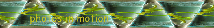 Blue_martiniphotos_in_motion1_preview