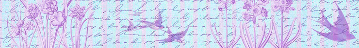 Banner_swallows740x100px_preview