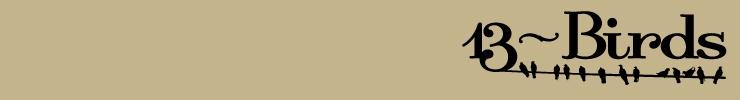13-birds_banner-740_100_preview