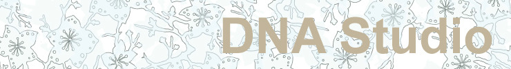 Banner-dnastudio_preview