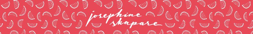 Spoonflower-header_josephineskapare_preview