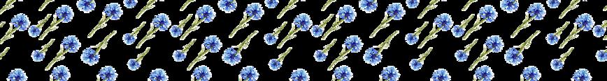 Albastrele-02_preview