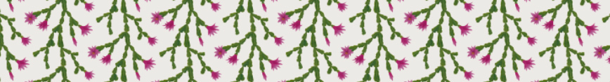 Zygo-spoonflower-banner_preview