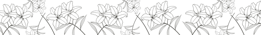 Banner_lillies_preview