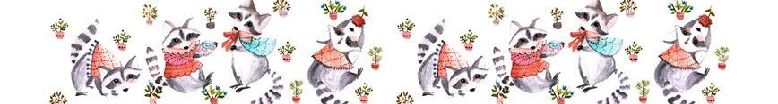 Racoon_afternoon_header_preview