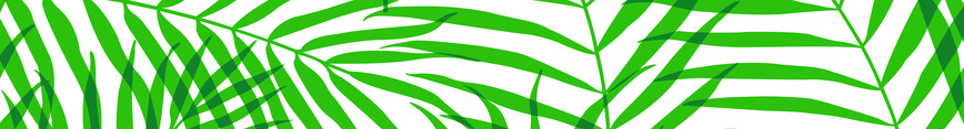 Overlapping_palms_repeat_copy_preview