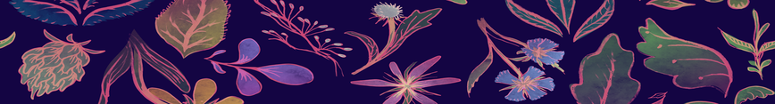 Midnightflora_banner_preview