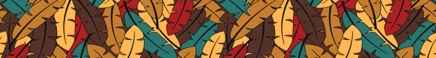 Banner-colorful-feathers-autumn_preview