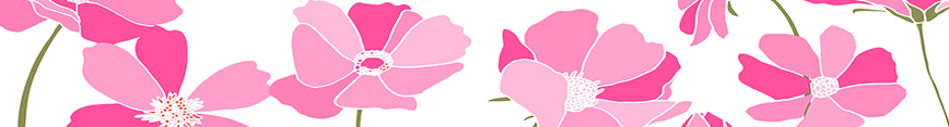 Kendra_flowers_cosmos-3_fors6_pinks_10002_preview