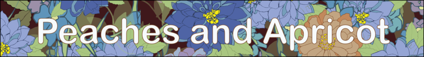 Spoonflower_banner_with_name_preview