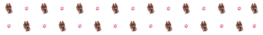 Tiny_with_paw_spoonflower_banner_jpg_preview