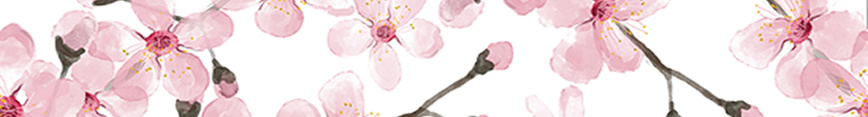Cherryblossom_sf_banner_preview