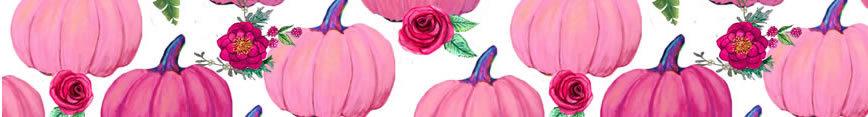 Sf_banner__pink_pumpkins_preview
