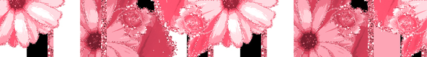 Spoonflower_2_preview