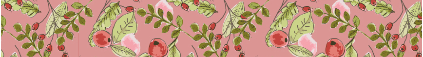 Cranberriesbanner_preview