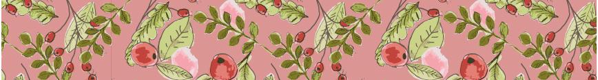Cranberriesbanner_preview