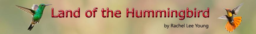 Land_of_the_hummingbird_banner_spoonflower_v2_preview