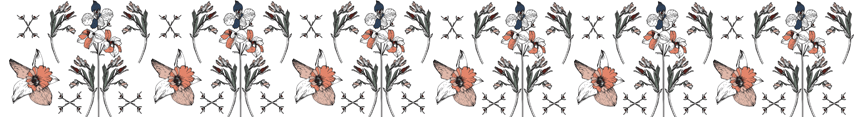 _gbdny-spoonflower-header_preview