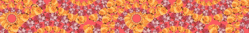 Ffs-spoonflower-header_preview