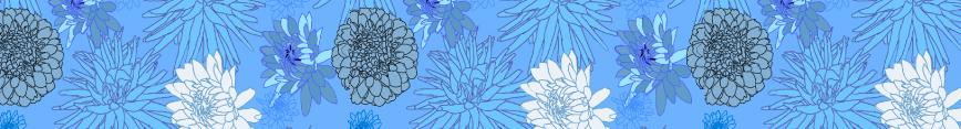 Dahlias-bluebanner_preview