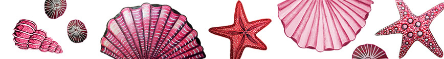 Seashell_or_starfish__plus_red_and_pink__snowflake_christmas_galaxy_fabric_preview