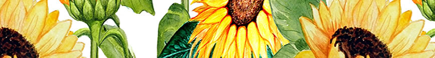 Sunflower_fabric_and_art_sunflower_fabric_or_wallpaper_and_sunflower_decor_by_magenta_rose_designs_at_spoonflower_preview