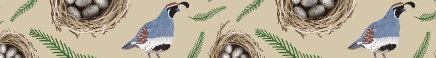 Spoonflower-banner_preview