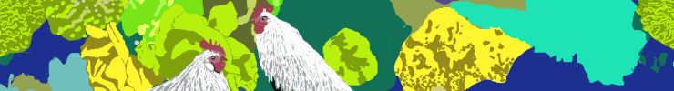 Spoonflower_banner_chicken_preview