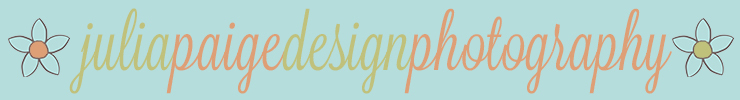 Spoonflowerbanner_preview