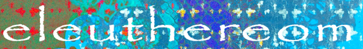 2014-spoonflower-bannerstrip_preview