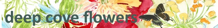 Banner_water_colour_flowers_preview