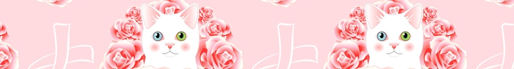 Shopbanner_copy_preview