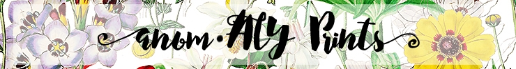 Sfbanner_preview
