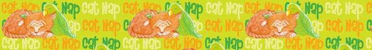 Catnap_preview